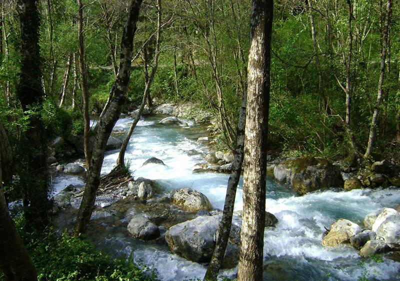 Der Fluss Argentino